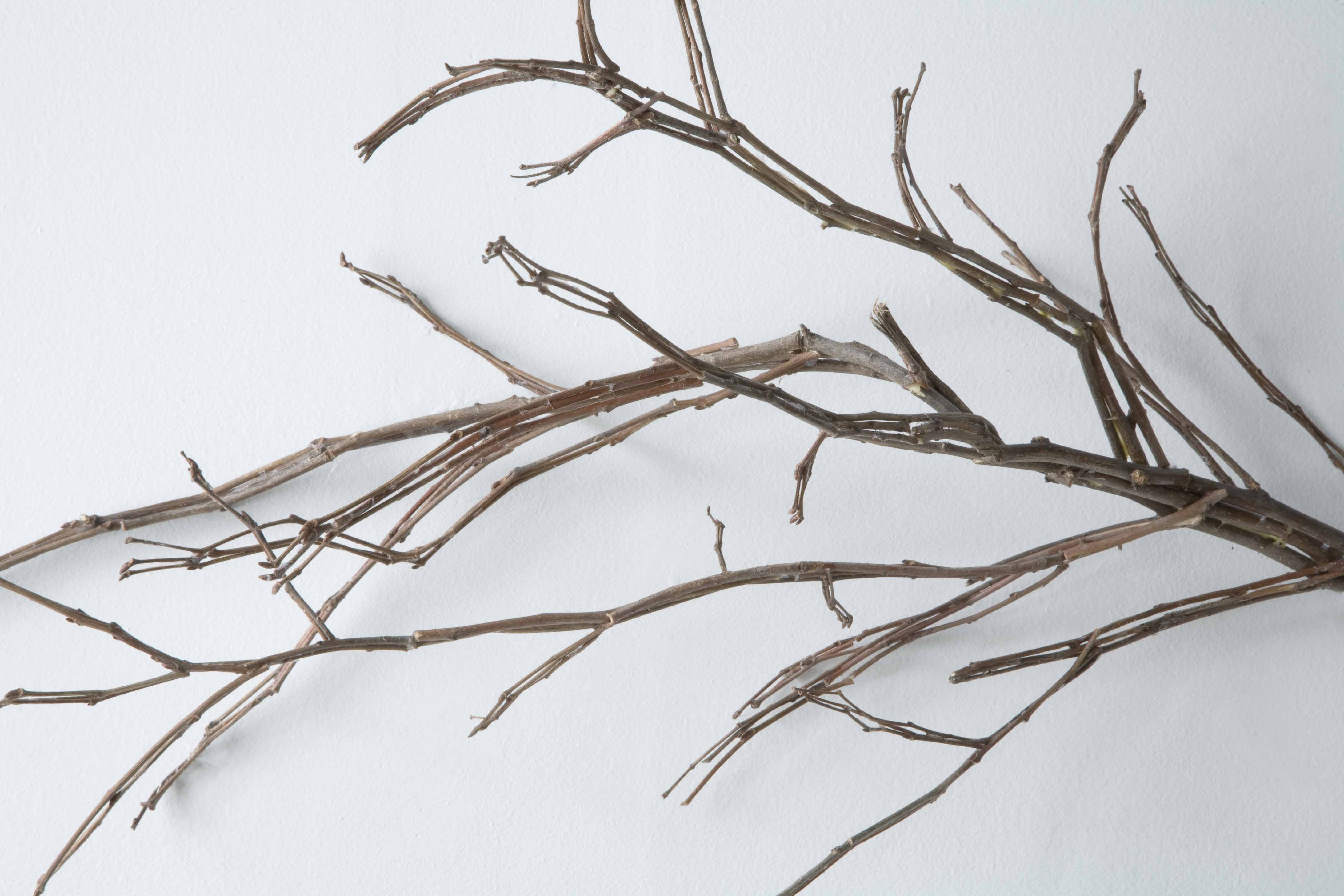 Jonathan Plante, Treesome (détail), 2008, bois, wood
