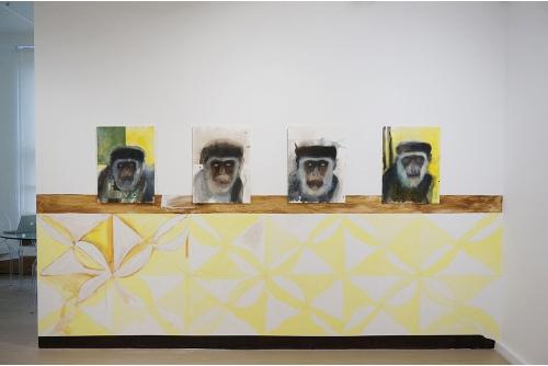 Trevor Gould, Live in a Box, 2014 Installation, Galerie Hugues Charbonneau, Montréal, Canada