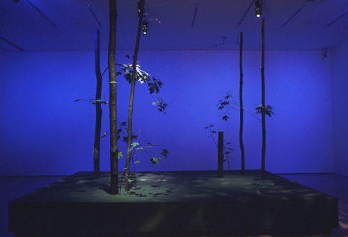 Trevor Gould, Model of Woodland Group- Parc Mont-Royal, 1998, installation, Musée d'art contemporain de Montréal