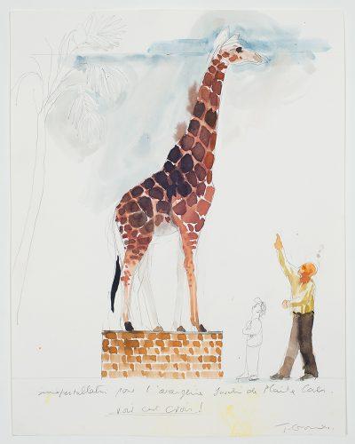 """Trevor Gould Installation pour l'Orangerie, Jardin de plantes, Cane,  Voir c'est croire !, 2000 aquarelle sur papier watercolour on paper 28 x 36 cm (11"""" x 14"""")"""