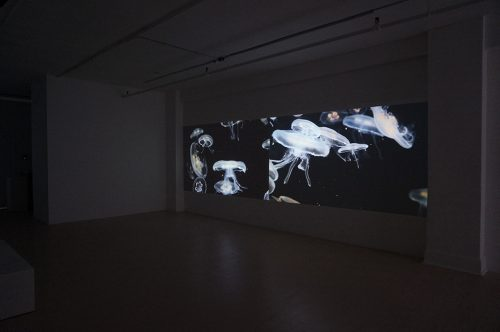 Alain Paiement, Irréversibles (vue d'installation _ installation view), 2014, Galerie Hugues Charbonneau, Montréal, Canada