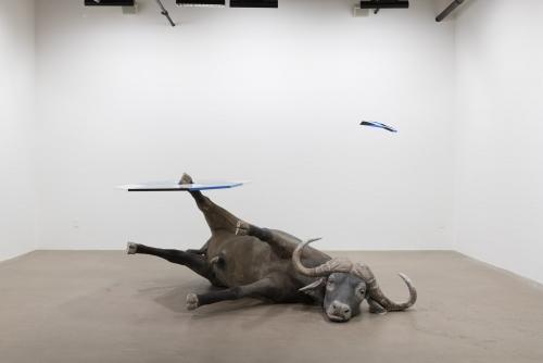 Trevor Gould, Talking to Death: An Allegory for Sculpture, 2018 Exposition / Exhibition Centre Clark, Montréal, Canada