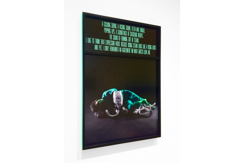 "Chloë Lum & Yannick, A Clicking Sound, A Hissing Sound; Teeth and Tongue, 2019 Inkjet prints in double frame Ed. 1/1 84 x 64 cm (33"" x 25,2"")"
