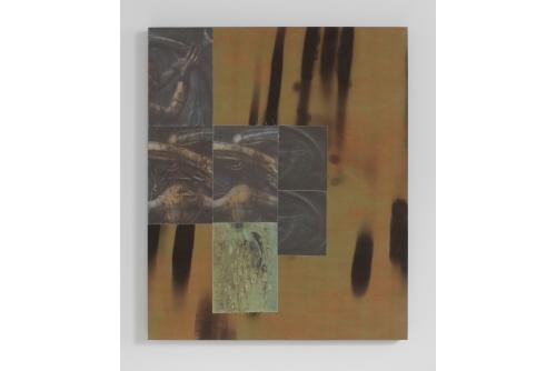 "Guillaume Adjutor Provost, Terra, 2021 Plant-based overdye and digital print on fabric, pine panel, acid free adhesive 92 x 76 cm (36"" x 30"") $3500"