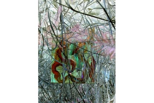 Jean-Benoit Pouliot, Broussaille (série Un monde qui se retourne), 2020 Digital print with UV treatment on Dibond aluminium composite panel 127 x 95 cm (50″ x 37.5″)